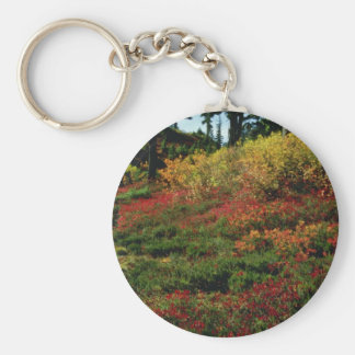 Red Fall in the Cascades flowers Keychain
