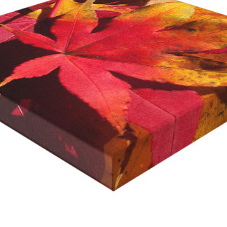 Red fall leaves, autumn colours custom canvas