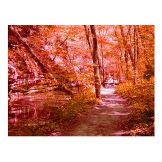 Red Fall Postcard