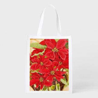 Red Festive Poinsettia