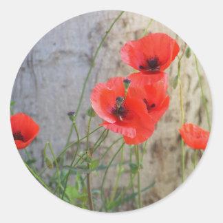 Red Field Corn Poppies Sticker
