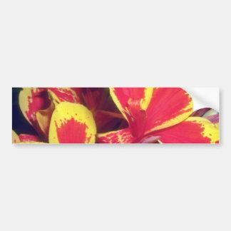 Red Fiery Glory flowers Bumper Stickers