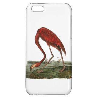 Red Flamingo Illustration Case For iPhone 5C