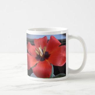 Red flower basic white mug