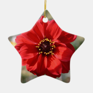 Red Flower Christmas Ornament