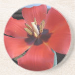 Red flower coasters
