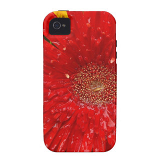Red Flower in the Morning Mist iPhone 4 Cover