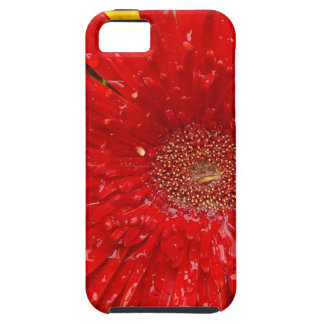 Red Flower in the Morning Mist Tough iPhone 5 Case