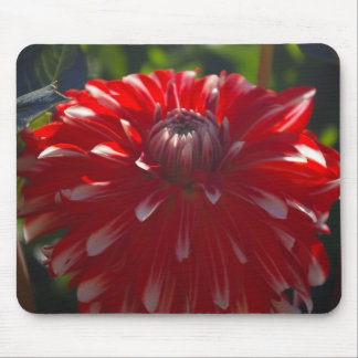 Red flower mousepad