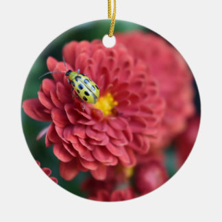 Red Flower Nature Photography Beetle Insect Bug Christmas Ornament