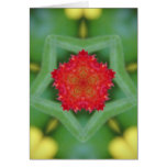 Red Flower Pentagon Greeting Card