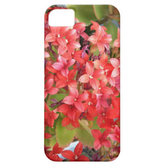 Red flower phonecase iPhone 5 cover