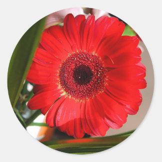Red Flower Round Sticker