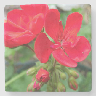 red flower stone coaster