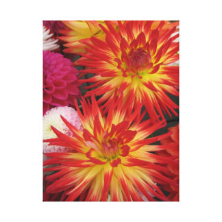 Red Flower Wrapped Canvas