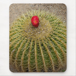 Red Flowering Cactus Mouse Mats