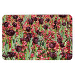 Red Flowers and dark tulips Magnets