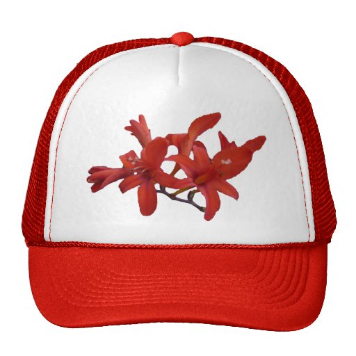 Red Flowers on Branch Mesh Hat