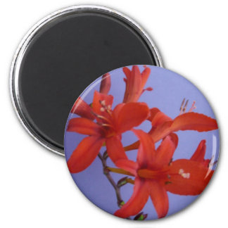 Red Flowers on Branch Magnet