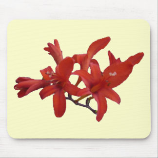 Red Flowers on Branch Mouse Pad