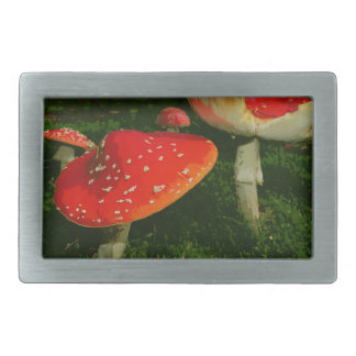 Red Fly Agaric Amanita Muscaria Mushrooms Photo Rectangular Belt Buckle