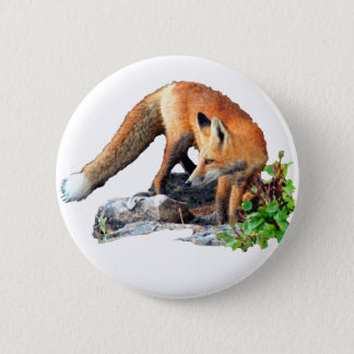 Red fox 6 cm round badge
