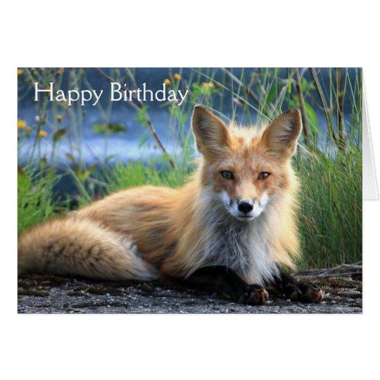 Red fox beautiful photo custom birthday card