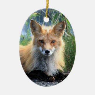 Red fox beautiful photo portrait ornament, gift christmas ornament
