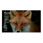 Red Fox Business Cards