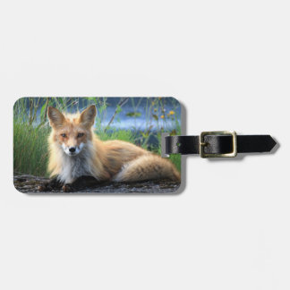 Red fox custom name and address luggage tag
