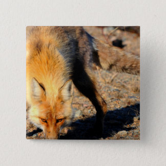 Red Fox Habitat Square Pin