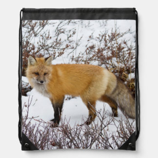 Red Fox in snow in winter Drawstring Bag