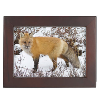 Red Fox in snow in winter Keepsake Box