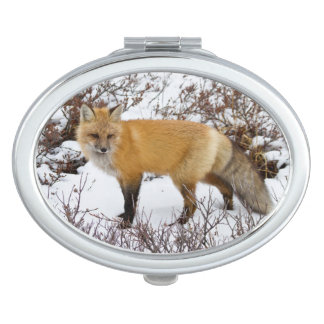 Red Fox in snow in winter Travel Mirror