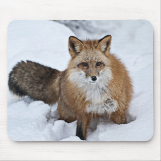 Red Fox in the Snow Mouse Mat