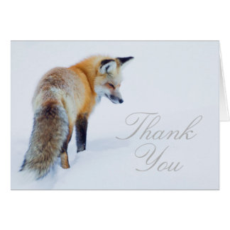 Red Fox in Winter Card