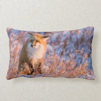 Red Fox in winter Churchill Wildlife Lumbar Cushion