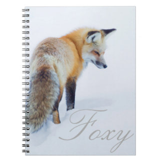 Red Fox in Winter Notebooks