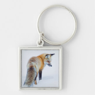 Red Fox in Winter Silver-Colored Square Key Ring
