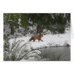 Red Fox in Winter Wonderland Card