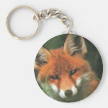 Red Fox Key Chains