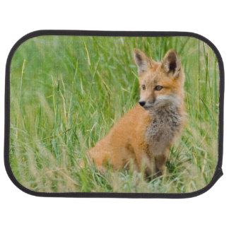 Red Fox Kit in grass near den Car Mat