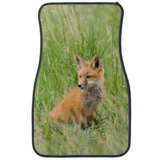 Red Fox Kit in grass near den Floor Mat