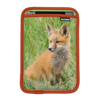 Red Fox Kit in grass near den iPad Mini Sleeve