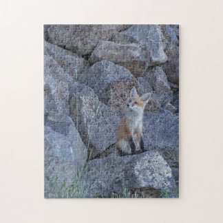 Red Fox Kit Jigsaw Puzzle