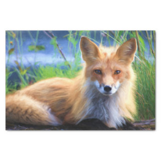 Red Fox Laying in the Grass Scenic Wildlife Tissue Paper