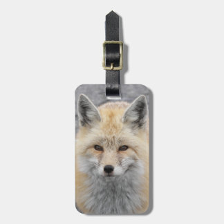 Red Fox Photo Tag For Luggage