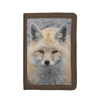 Red Fox Photo Tri-fold Wallet