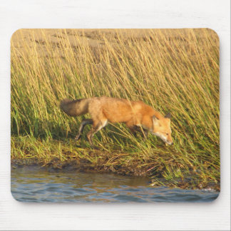 Red Fox Photograph Mouse Mat