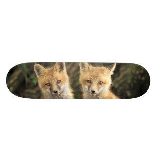 Red Fox pup in front of den Vulpes vulpes) 18.1 Cm Old School Skateboard Deck